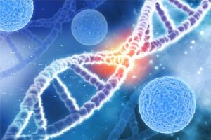 HLA nomenclature cells with DNA