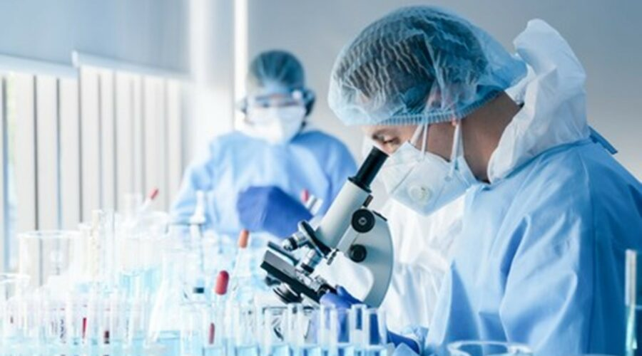 Researchers looking into microscope for cell therapy research