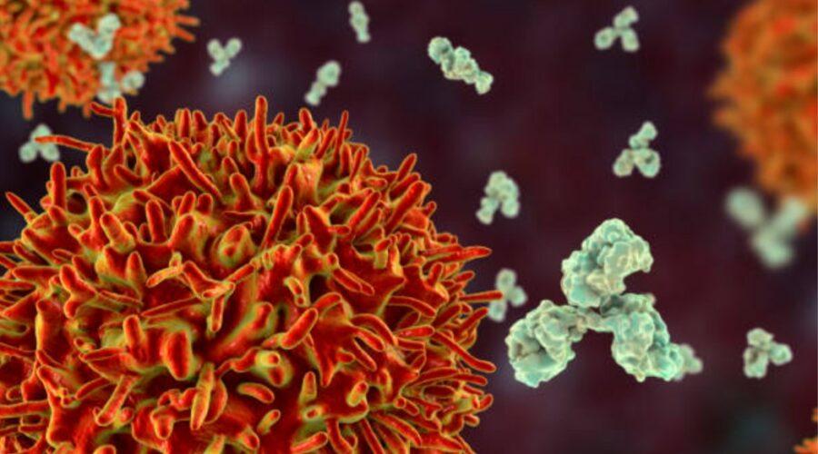 CD19 B Cells Releasing Antibodies